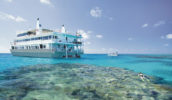 Snorkel the stunning Great Barrier Reef with Coral Expeditions