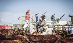 Longreach has a proud history of cattle droving.