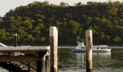 The ferry takes passengers to Dangar Island (photo: Alicia Taylor).