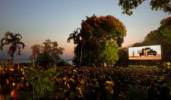 Between April and November in Darwin, head to the Deckcahir Cinema to watch a movie underneath the stars.