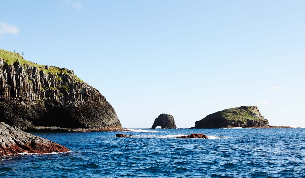 Norfolk Island's buttress-like coast