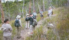 Visitors take a guided walk to Fluted Cape on South Bruny Island (photo: Nathan Dyer).