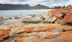 The view from Wineglass Bay near Freycinet Peninsula (photo: Nathan Dyer).