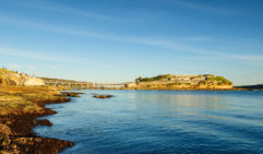 You might see anything from pineapple fish to turtles while snorkelling Bare Island,  La Perouse.