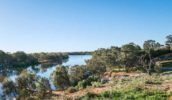 south australian road trips murray river