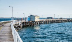 The old jetty at Port Lincoln, a city well-known for its deep-water shark experiences (photo: Michael Wee).