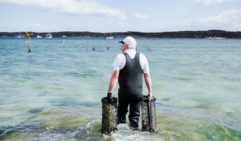 On the hunt for the fresh oysters, on the oyster farm tour in Coffin Bay (photo: Michael Wee).