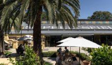 South Australian Road trips, epicurean way wine dine food eat