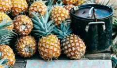 Glass House pineapples; put 50 cents in the can and take a fresh pineapple home (photo: Elise Hassey).