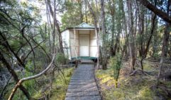 Little huts at Par Avion's wilderness camp in Tasmania (photo: Matt Glastonbury)