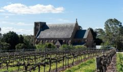 The vineyard of historic Sevenhill Winery in Clare Valley (photo: Leigh Griffiths).