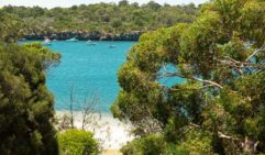 The Swan River doesn't get much bluer than around Chidley Reserve (photo: Ella Liascos).