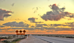 Australia's straightest road trip: the Nullarbor Plain.