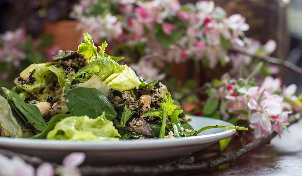 Leura Garage fresh salad Blue Mountains