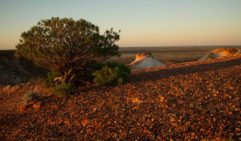 The ground near the Breakaways, 30 kilomotres from Coober Pedy, can reach 65 degrees Celsius (photo: Jonathan Cami).
