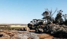 The golden outback western australia outback road trips