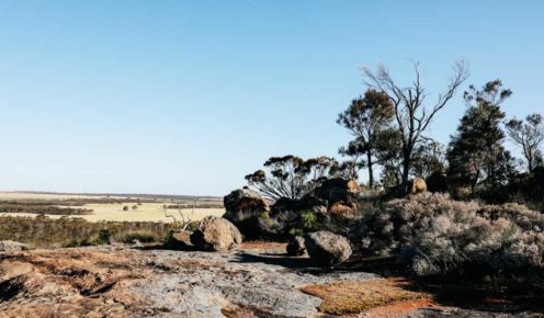 Explore the Humps, a massive granite rock formation in Hyden (photo: Elise Hassey).