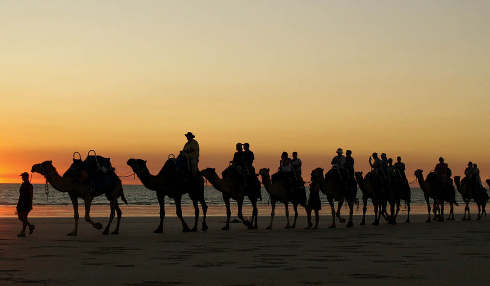 That famous Broome sunset, complete with camel train