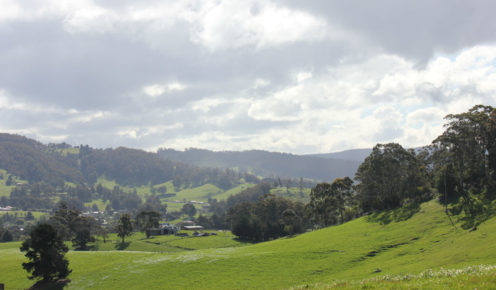 The Huon Valley's landscape is rural idyll. Tasmania (photo: Lara Picone).