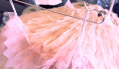 qualia: tutus await their dancers   (photo: Julian Kingma).