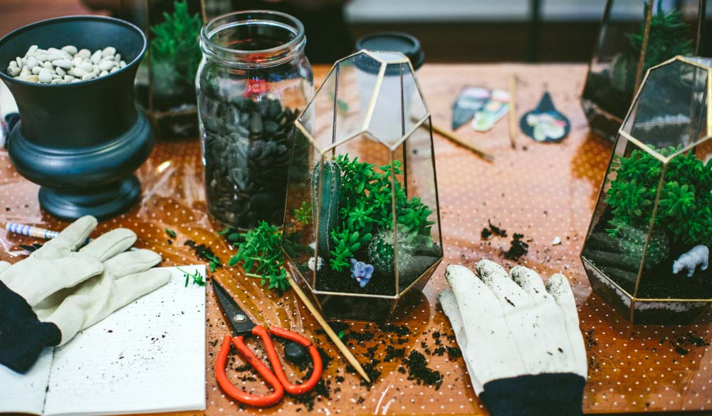 Dirt, gloves and terrarium with Fox & Rabbit