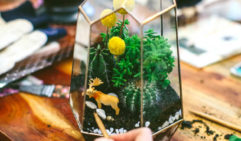 Make a Terrarium for your own home. Fox & Rabbit in Perth offer classes to help you on your way.