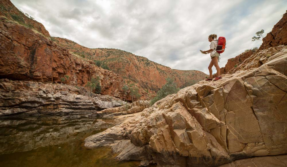 Hike West McDonnell National Park in the Northern Territory, it's teaming with wildlife.