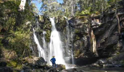 Take a five-kilometre walk through the beautiful apple orchards of Allenvale and up to the Phantom Falls.