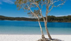 Do not miss a swim at Lake McKenzie.