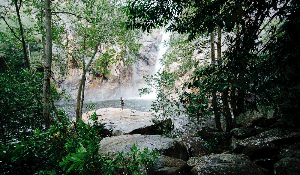 Kakadu wet season national park northern territory