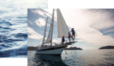 Tasmania sailing island adventure