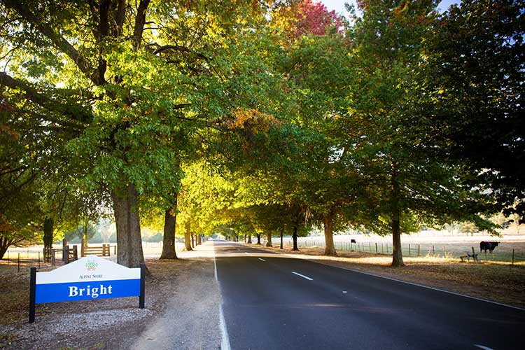The famous entrance into Bright on a autumn morning, along the Great Alpine Rd in Victoria, Australia