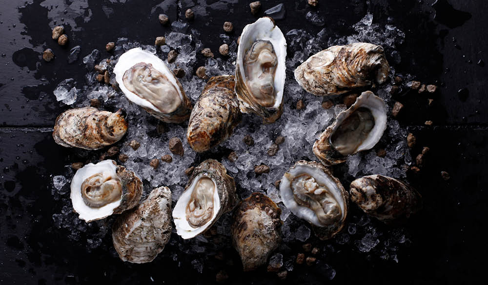 Some of Australia's best Oysters are found along the Eurobodalla Coast in New South Wales.