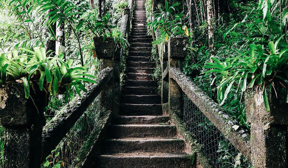 tropical destination castle jose margarita queensland
