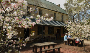 Albany festival things to do sights new south wales
