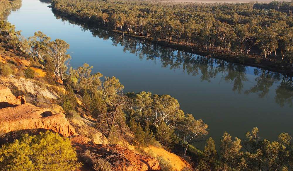 The classic Murray River-scape (photo: Gina Woodward).