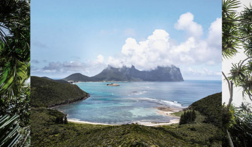 Less than two hours from the mainland, but another world entirely, find yourself intoxicated by the colours, creatures and atmosphere of Lord Howe