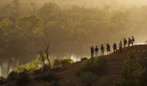 Murray River Luxury Walks