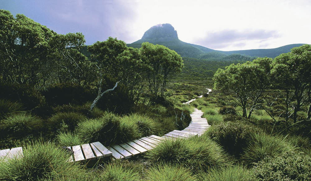 For the misty mountain lover: Cradle Mountain, Tasmania.
