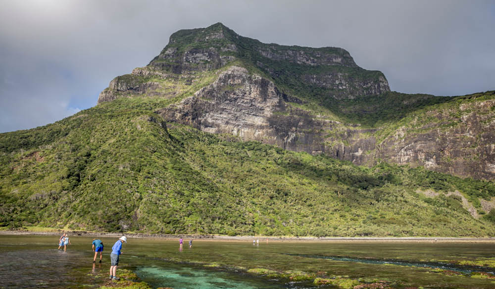 An 875-metre former volcano challenging enough for you? Seven Peaks Walk, Lord Howe Island.