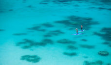 Lizard Island things to do