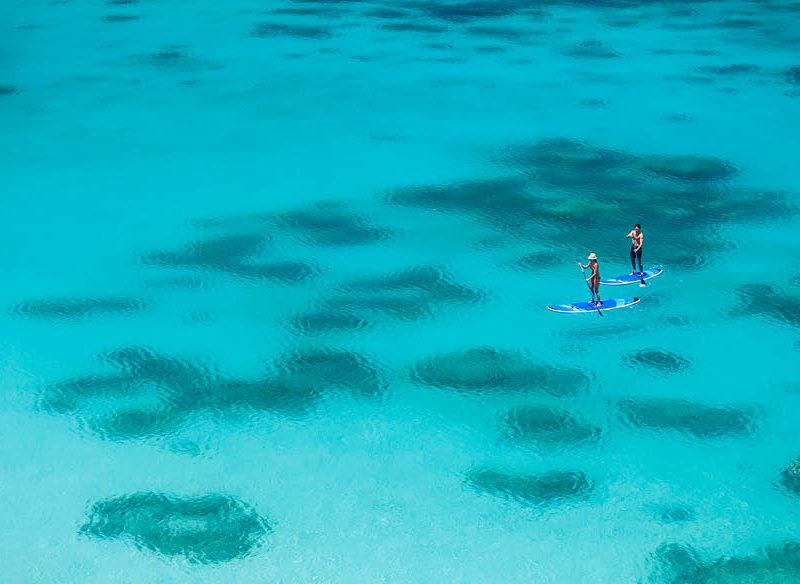 Lizard Island things to do