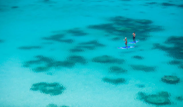 Paddle Board Lizard Island