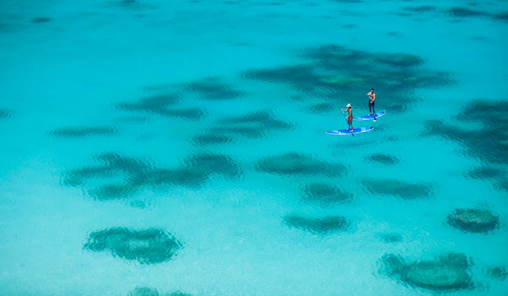Paddle board in paradise?  That's Lizard Island