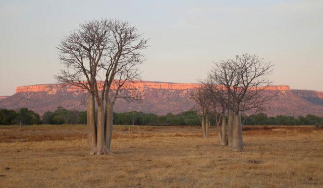 Sunset in Kununurra