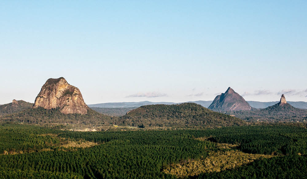 Forested Glass house Mountains 0082