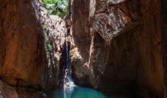 The crystal clear water of Mac Micking Pool at the end of El Questro Gorge, a small year-round waterfall that is cast in angelic light around midday (photo: Dillon Seitchik-Reardon).