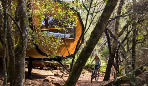 The sleeping pods make for an unusual discovery in the forest (photo: Natalie Mendham).
