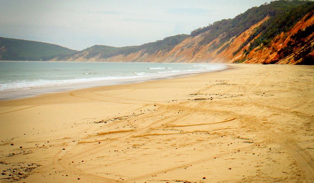 Driving Tracks  at Rainbow Beach between Noosa and Fraser Island