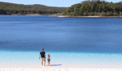Families love playing about on Lake Mckenzie's shore.